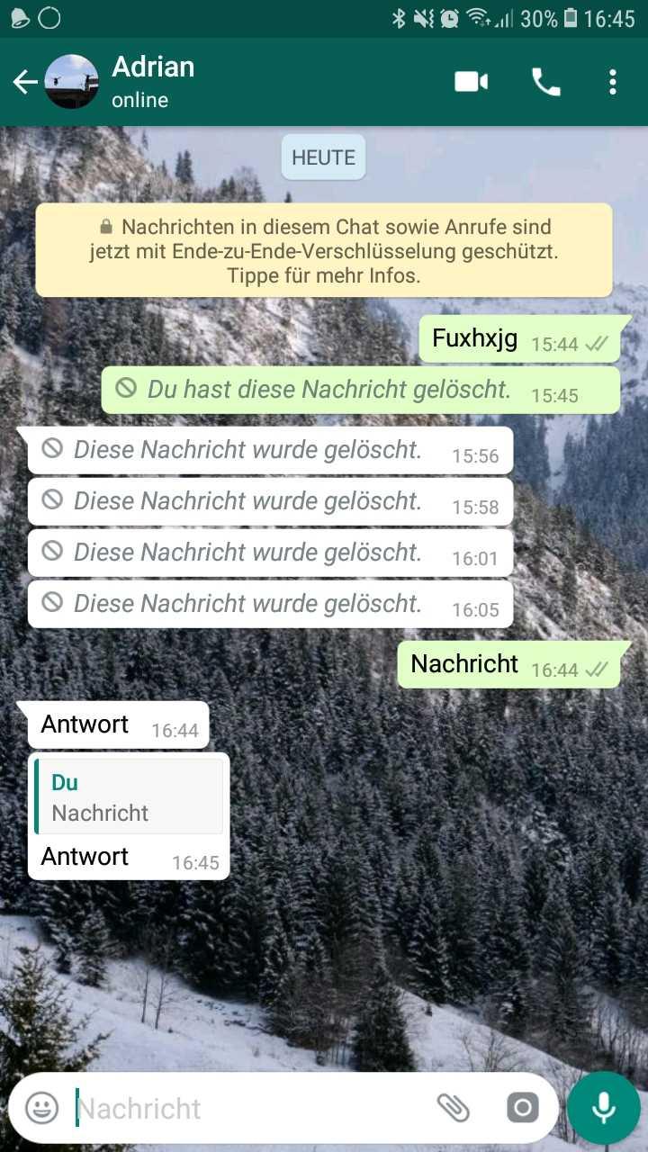 Screenshot WhatsApp: Nachricht wird zitiert