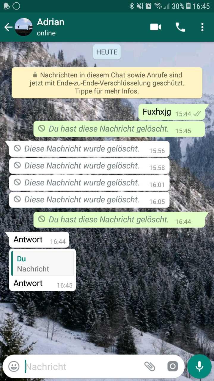 Screenshot gelöschte WhatsApp-Nachricht