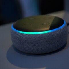 Alexa-Sprachaufnahmen löschen auf dem Amazon Echo